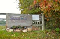 Wicked Oak