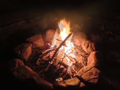 Dave's fire