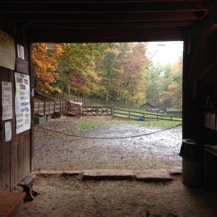 view from the stables