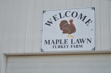 Maple Lawn Farms